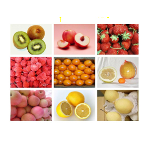 Fruits_Vegetables2